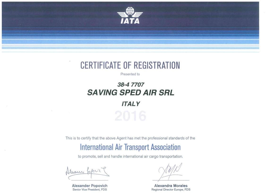 http://www.savingroup.com/images/uploads/qualita/IATA2016.jpg